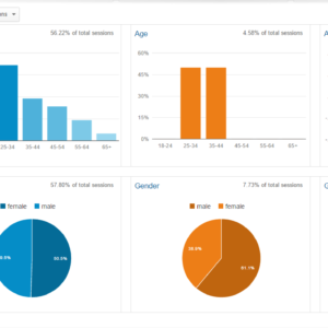 Overview of Audience Reports in Google Analytics?
